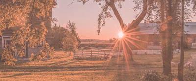 farm dawn-farm chores time